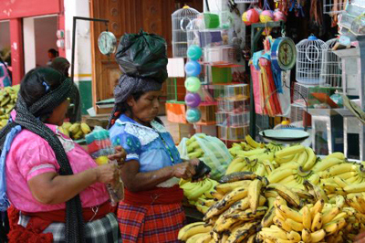 The Market in Tlacolula